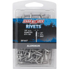 Channellock 1/8 In. Dia. x 1/8 In. Grip Aluminum Multigrip POP Rivet (100-Pack) Image 1