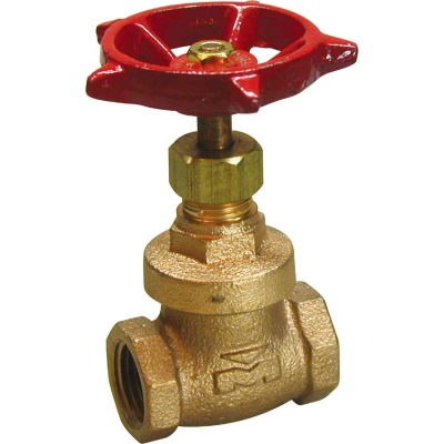 ProLine 3/4 In. FIPS x 3/4 In. FIPS Forged Brass Gate Valve
