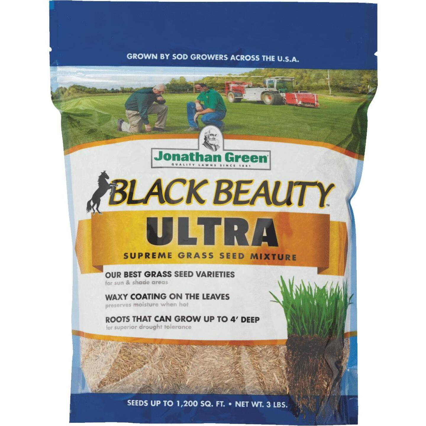 Jonathan Green Black Beauty Ultra 3 Lb. 600 Sq. Ft. Coverage Tall Fescue Grass Seed Image 1