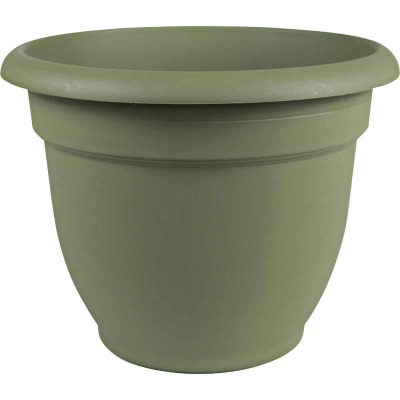 Bloem Ariana 10 In. Plastic Self Watering Thyme Green Planter