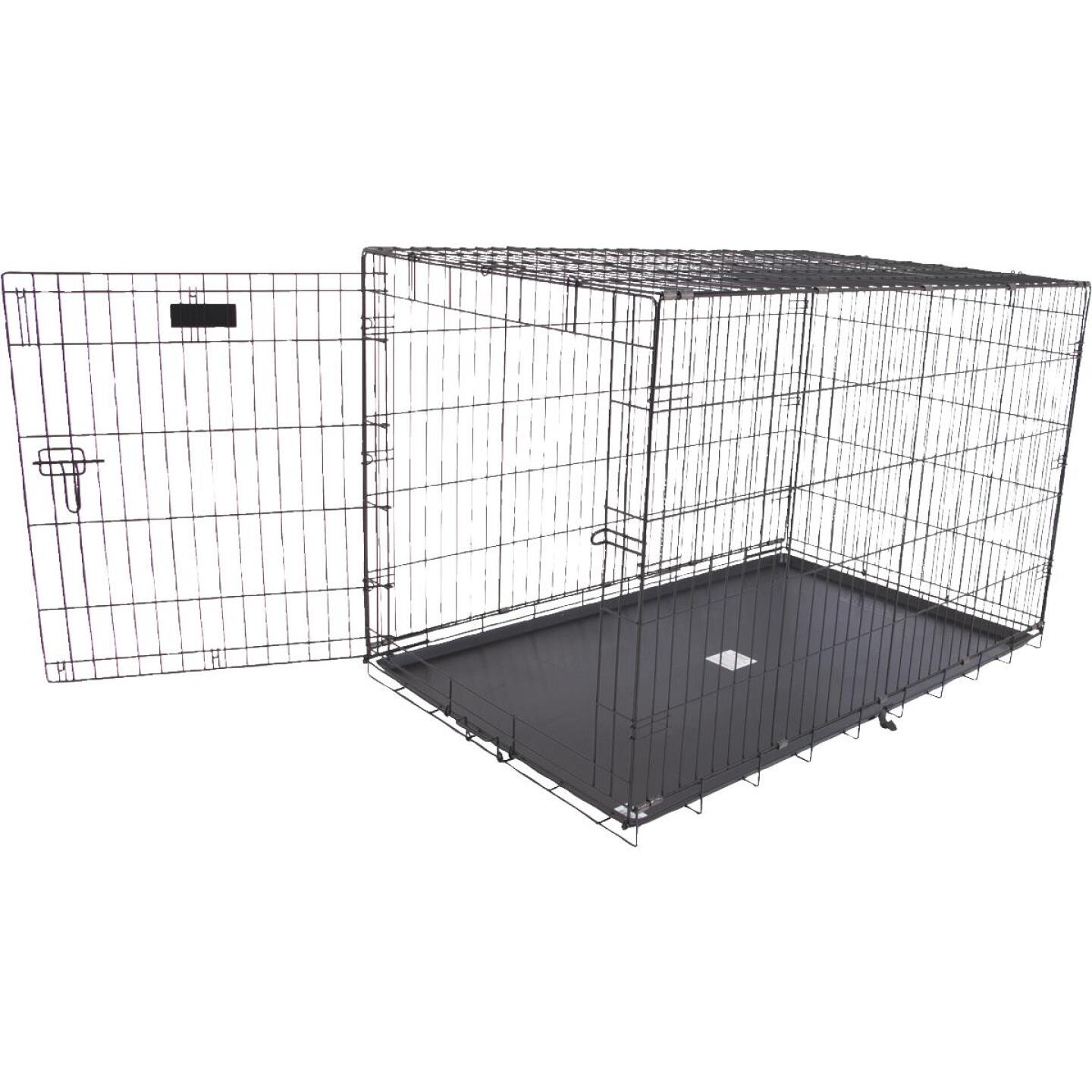 Petmate Aspen Pet 29.3 In. W. x 31 In. H. x 43.4 In. L. Heavy-Gauge Wire Indoor Training Dog Crate Image 1